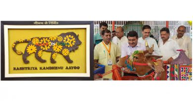 Kamdhenu Aayog to pitch for cow education in schools